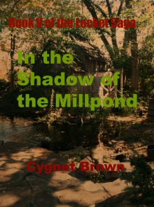 in-the-shadow-of-the-millpond-03
